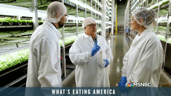 "Rock Brook Client Aerofarms ""Farm Of The Future"" On MSNBC"